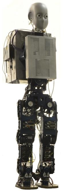 Humanoid Robotics | The BioRobotics Institute